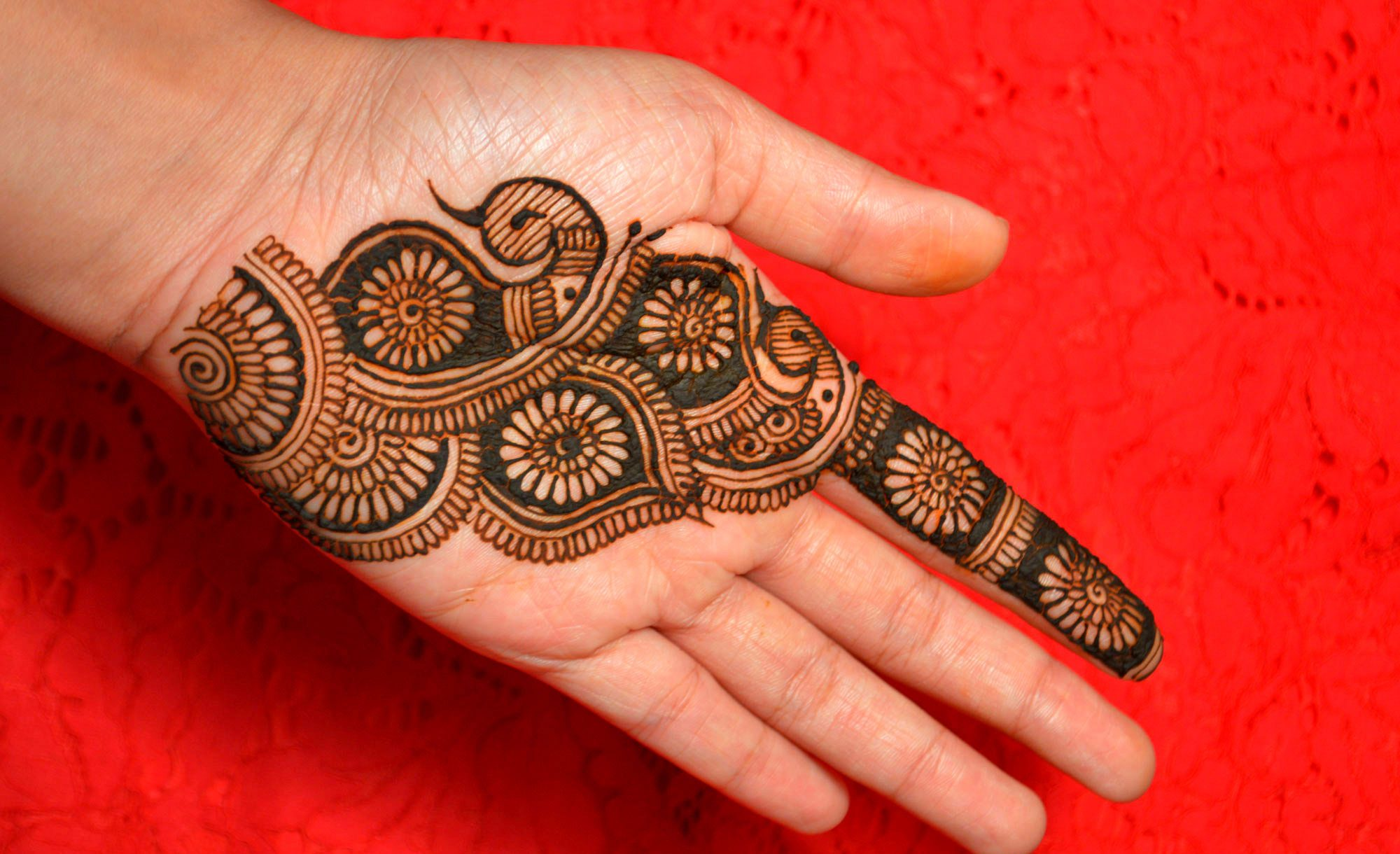 stylish simple new mehndi design